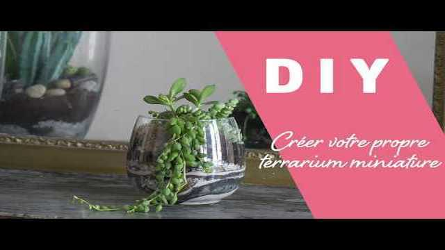 comment cr er son propre terrarium miniature diy femmesplus vid os. Black Bedroom Furniture Sets. Home Design Ideas